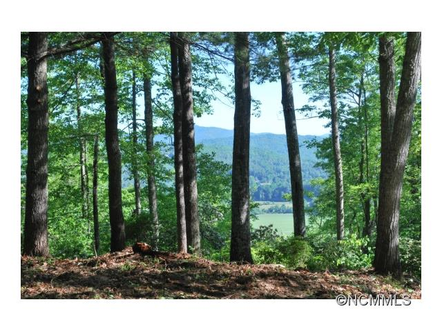 lot 32 Reserve Road 32, Pisgah Forest, NC 28768