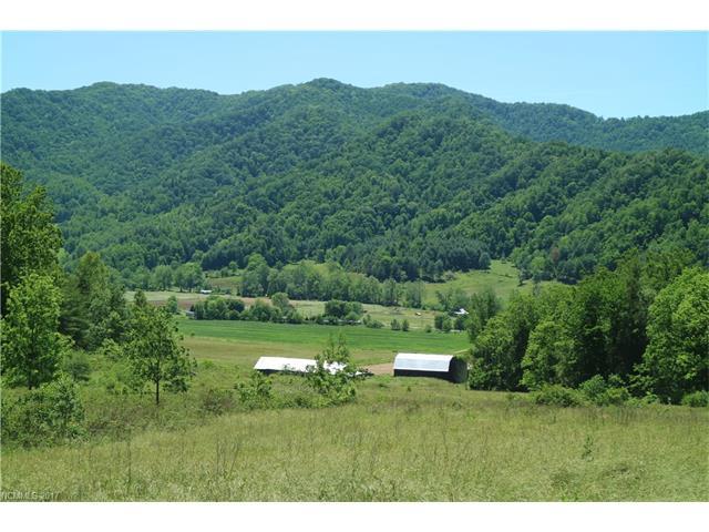 TBD & 309 Granger Mountain Road, Hot Springs, NC 28743