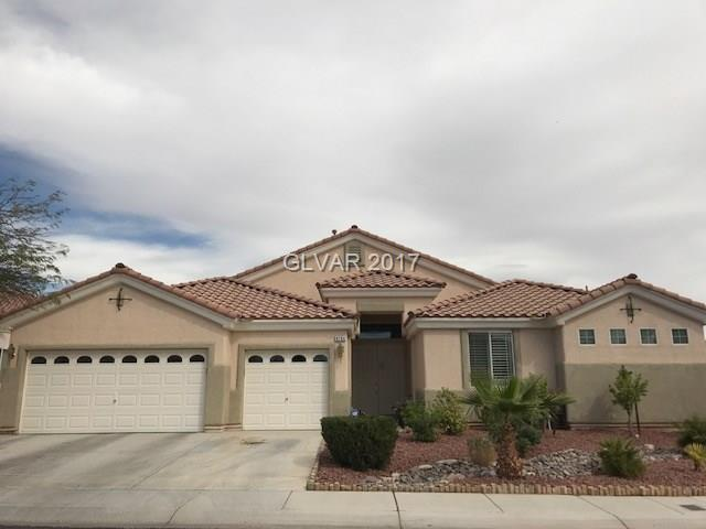 8704 WILDCAT CANYON Avenue, Las Vegas, NV 89178