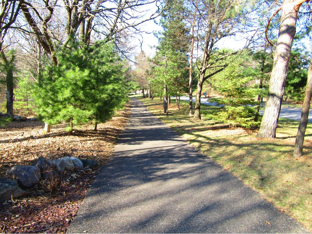 26652 Woodlands Parkway, Livonia Twp, MN 55398