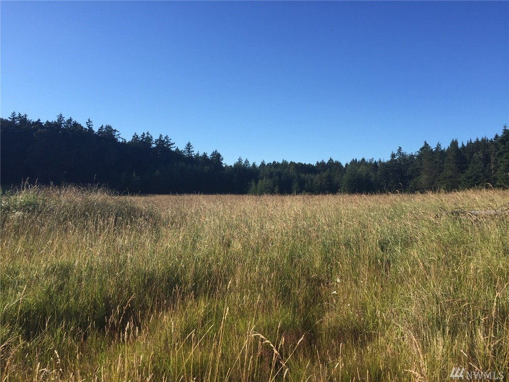 Forest Acres Lane, San Juan Island, WA 98250