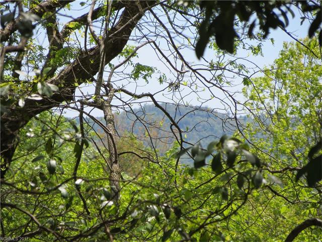 Connestee Trail L406U2, Brevard, NC 28712
