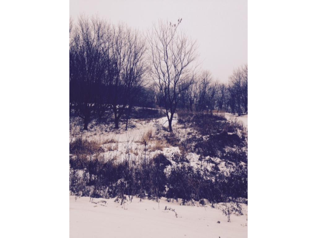 xxxx Ashby Estates Road W, Pelican Lake Twp, MN 56309