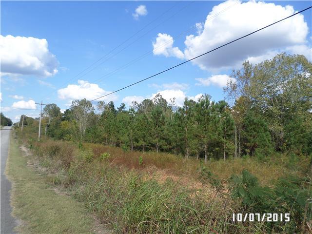 0 Highway 43 S, Saint Joseph, TN 38481