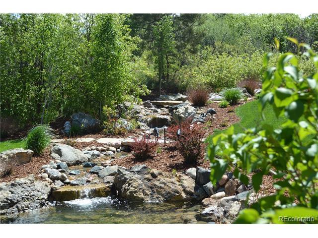 4660 Silver Pine Drive, Castle Rock, CO 80108