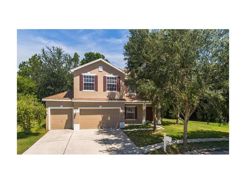 12505 BAY BRANCH COURT, TAMPA, FL 33635