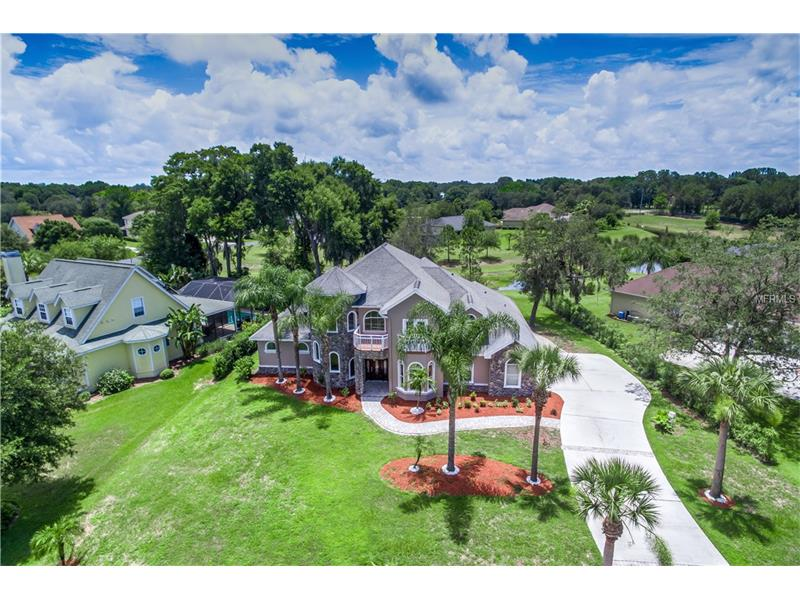 19925 DOLORES ANN COURT, LUTZ, FL 33549
