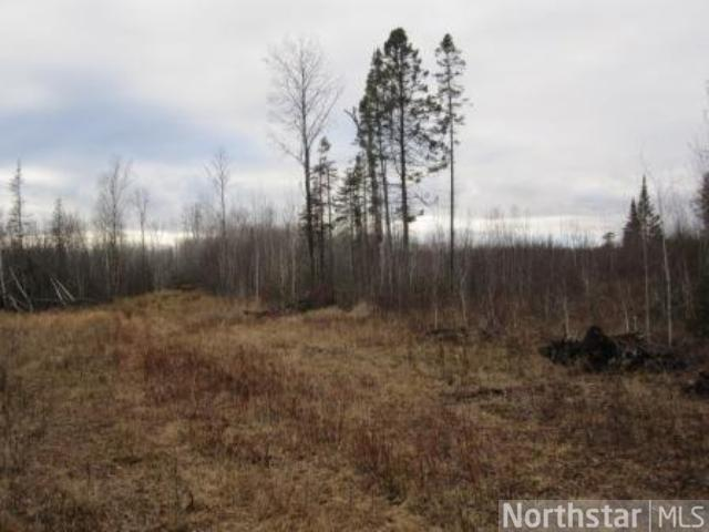 TBD Bakke Road, Bigfork, MN 56628