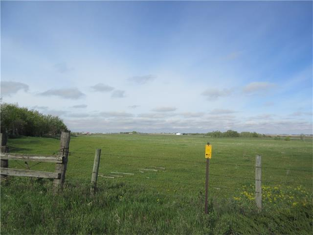 Wildflower Road, Strathmore, AB T1P 1J6
