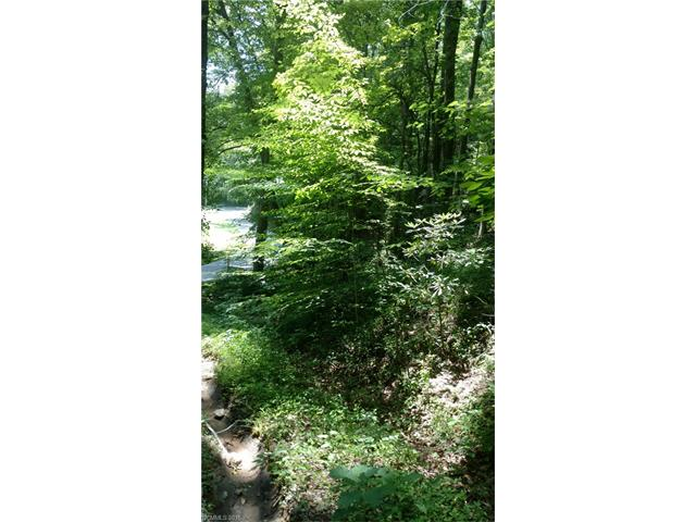 Lot 12B Indian Camp Mountain None, Rosman, NC 28772