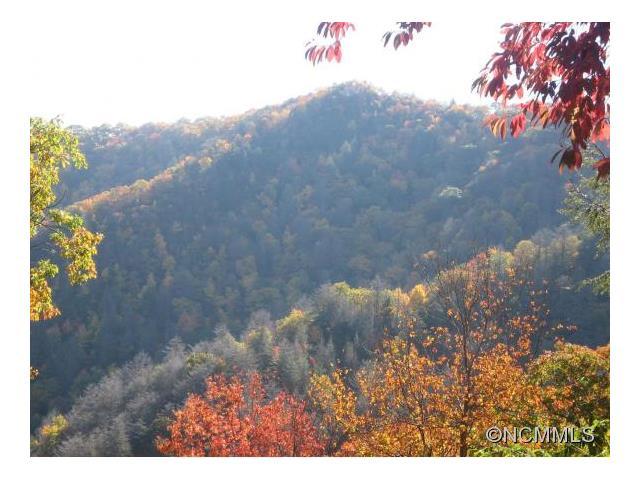 00 Hoot Owl Ridge, Maggie Valley, NC 28751