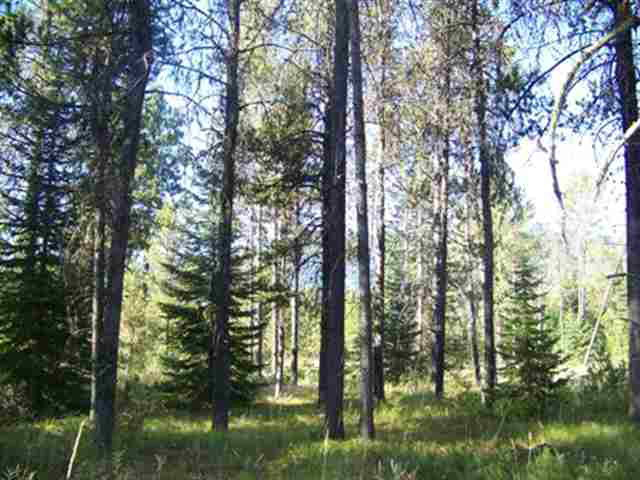 15 Spring Water Court, Donnelly, ID 83615