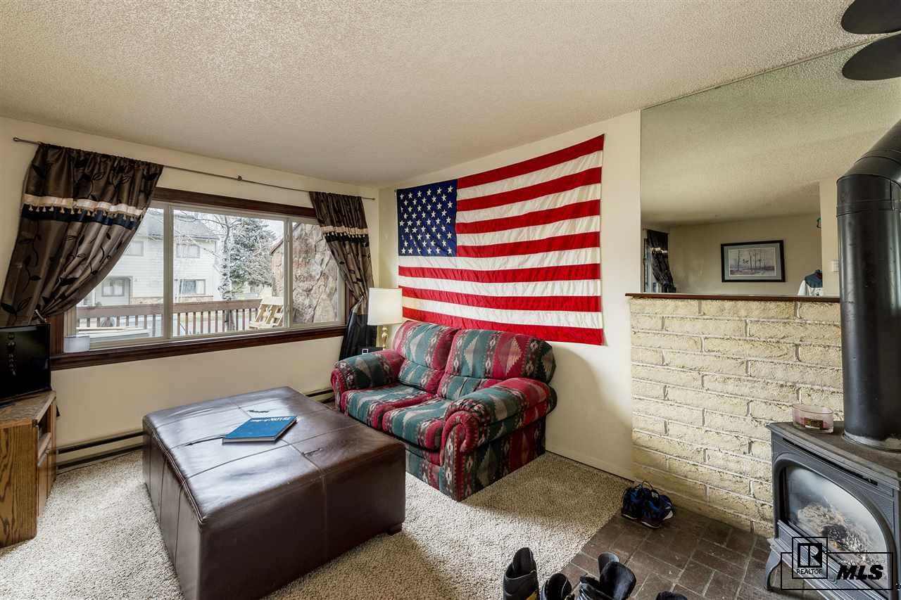 9 Cypress Ct, Steamboat Springs, CO 80487