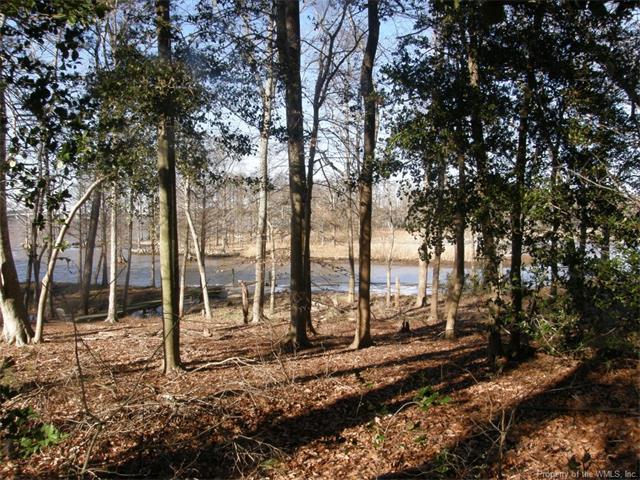 1585 River Ridge, Williamsburg, VA 23185