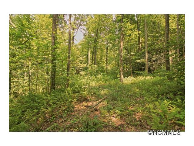 REDUCED from 50K, Buy with MLS 566579 for a packaged price. Beautiful land ready for your new home all located in a community of low density lots, easily accessed via a comfortable gravel road, and on a cul-de-sac. Just outside Historic Downtown Hendersonville, I26 Interstate, Sams Club and restaurants. Property offers a creek that runs along the back of lot, a potential pond site, mature timber, Drive has been cut to a home site amongst mature hardwoods, &  winter views andpotental year round.