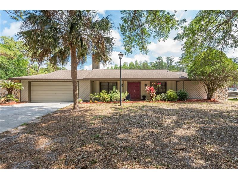 17101 BRIDLEPATH COURT, LUTZ, FL 33558