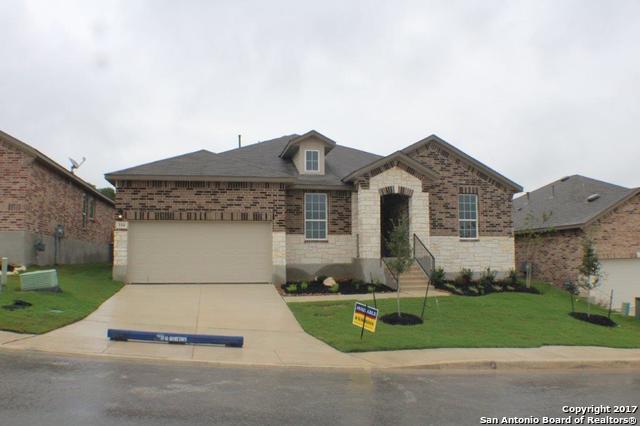114 CACKLING GOOSE, San Antonio, TX 78253