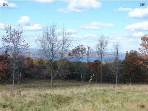 4419 SATTERLY HILL ROAD, PARCEL 4, Hector, NY 14818