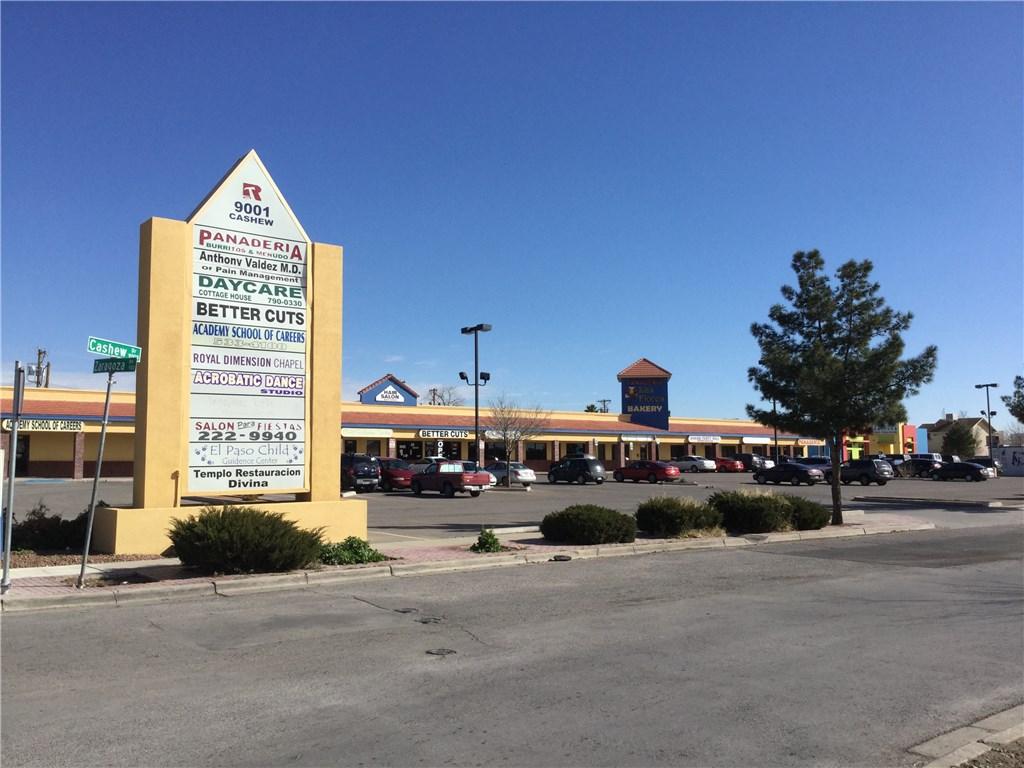 9001 Cashew Drive ALL, El Paso, TX 79907