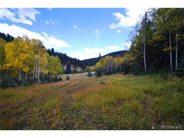 7579 WHISPERING BROOK Trail, Evergreen, CO 80439