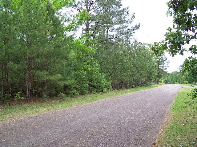 Lot D Ridgewood Dr, Summit, MS 39666