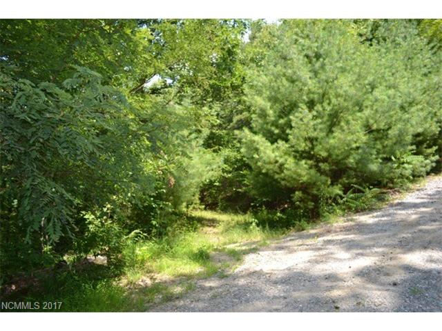 9999 Harrison Hill Road, Swannanoa, NC 28778