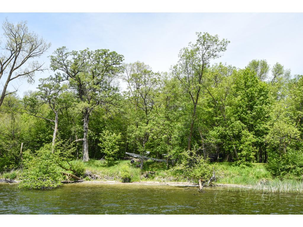 LOT 1 BLK 1 WOODHAVEN, Candor Twp, MN 56587