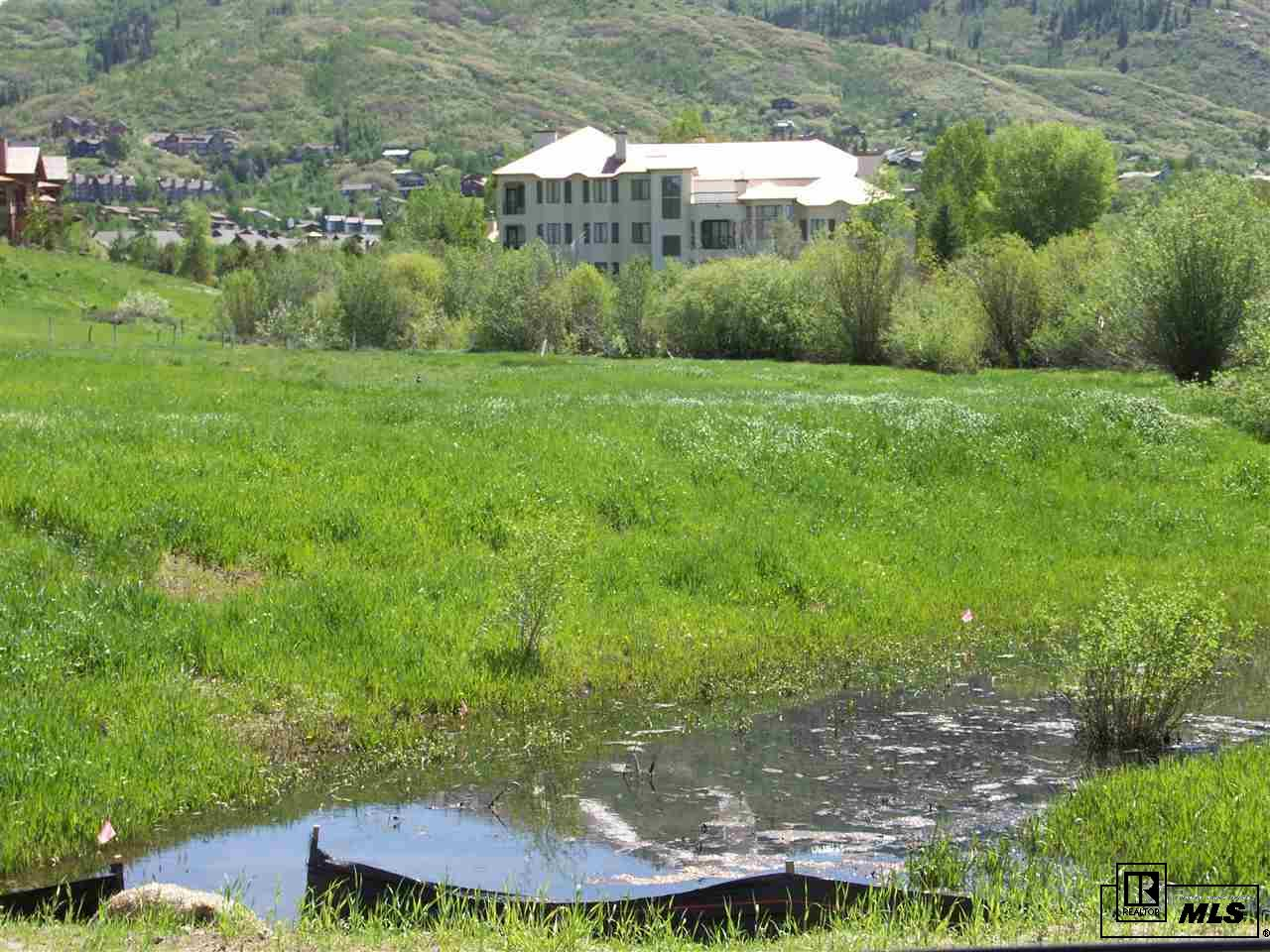 2850 Owl Hoot Trail, Steamboat Springs, CO 80477
