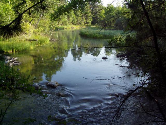 Lots 1-9 &.. Falling Leaf Trail, Park Rapids, MN 56470