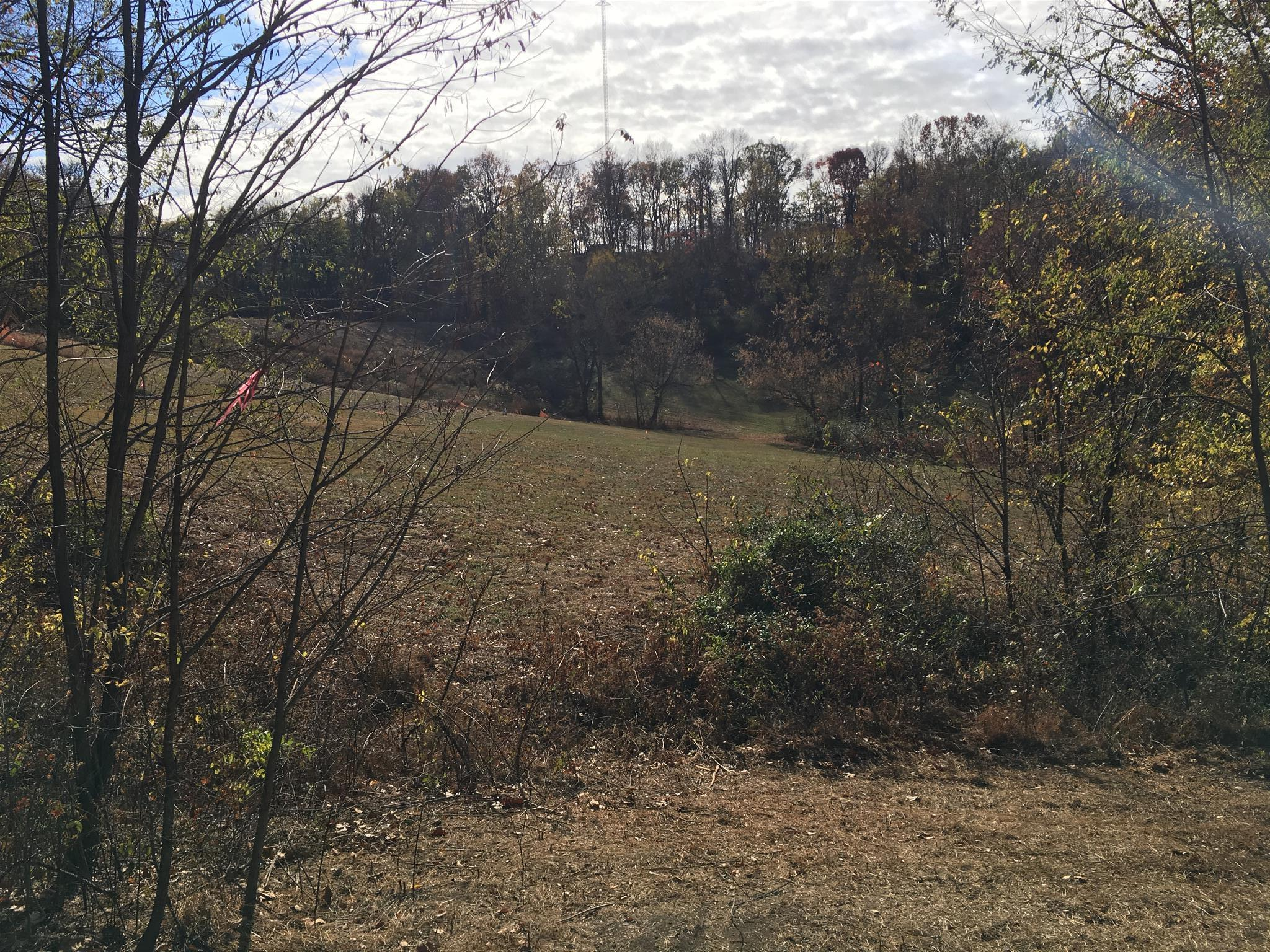 0 Evergreen Rd (Tract #2), Thompsons Station, TN 37179