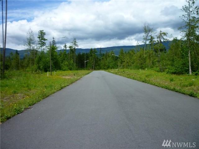 Trillium Lane, Concrete, WA 98237