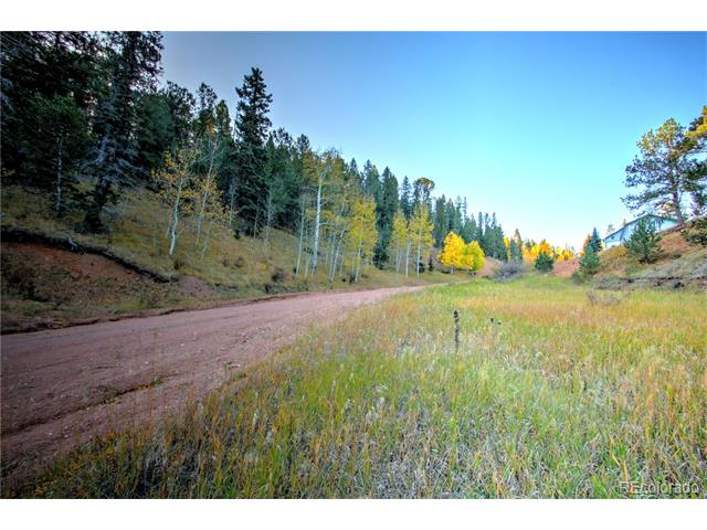 493 Willow Road, Divide, CO 80814