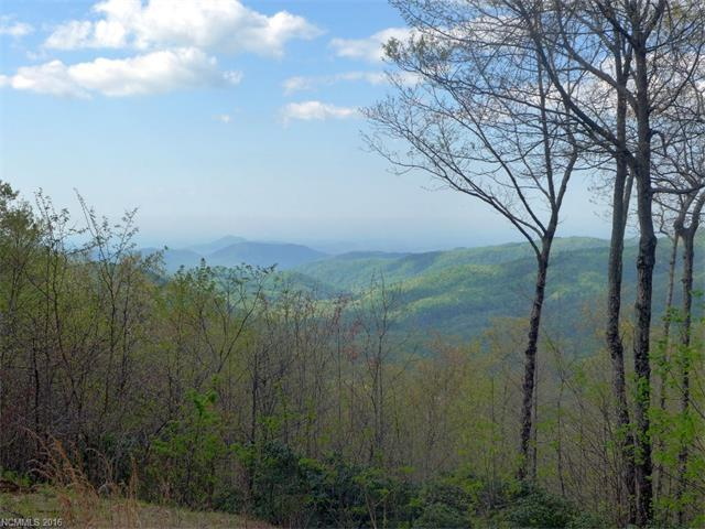 18 Indian Camp Mountain Road 18, Rosman, NC 28772