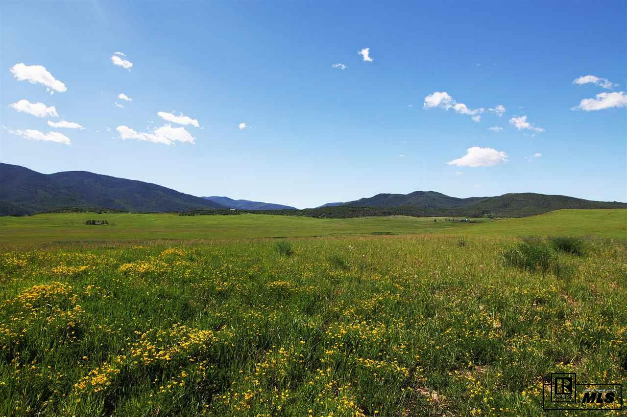 31725 County Road 14C, Steamboat Springs, CO 80487