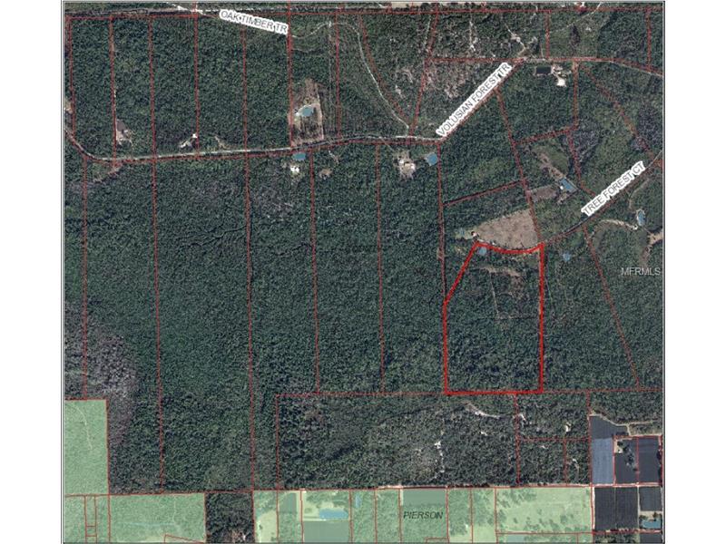 TREE FOREST COURT, PIERSON, FL 32180