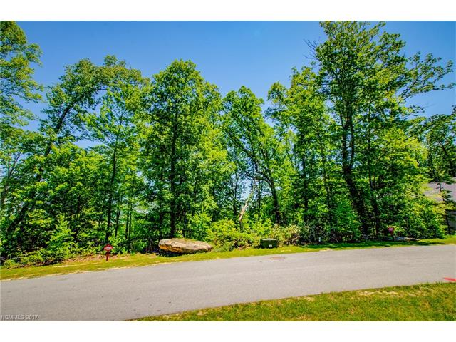 Build your dream home on this lovely cul-de-sac lot that balances the privacy of trees and potential views when the trees are cleared for building.  Carriage Park is a gated community which offers a clubhouse, pool, walking trails and active social lifestyle all within a few minutes of Hendersonville shopping, restaurants, Flat Rock Playhouse, and National Forest.