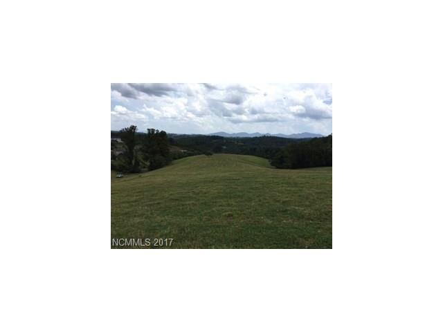 15.858 Acres Turkey Creek Road, Leicester, NC 28748