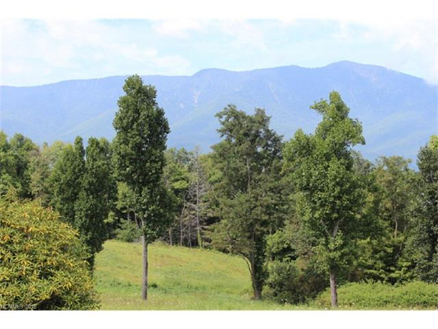 00 Cabbage Patch Road, Burnsville, NC 28714