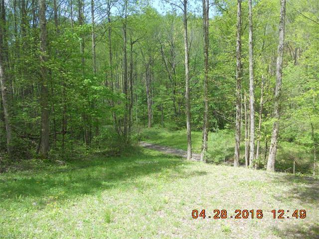 409 Martins Creek Road, Barnardsville, NC 28709