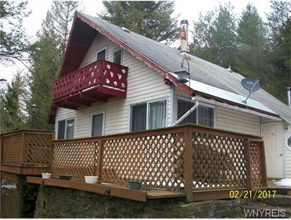 6982 Poverty Hill Road, Ellicottville, NY 14731