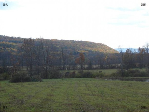 4419 SATTERLY HILL ROAD, PARCEL 7, Hector, NY 14818