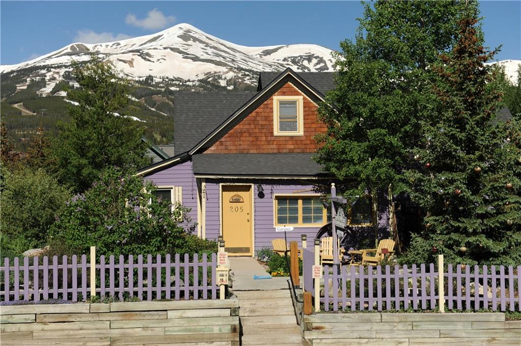 205 S French STREET, BRECKENRIDGE, CO 80424
