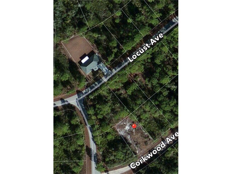 46 BARNACLE AVENUE, LAKE PLACID, FL 33852