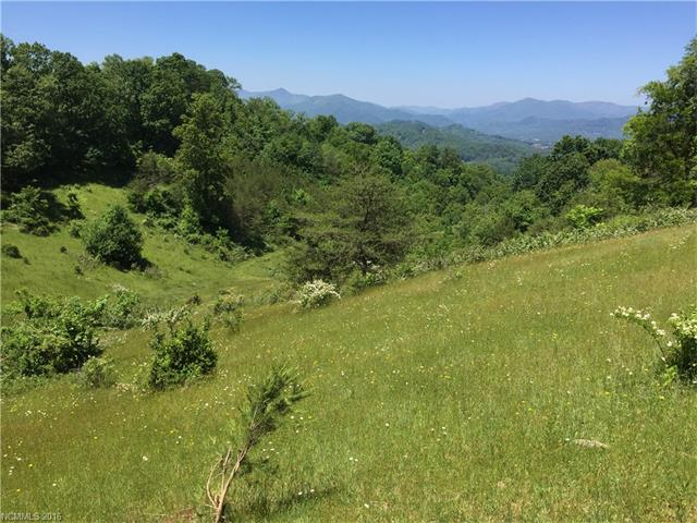 TBD (50 Acres) Grasty Road, Clyde, NC 28721