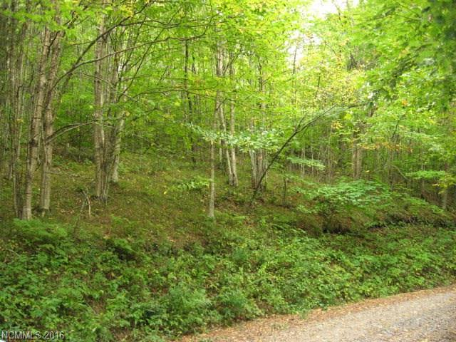 000 Big Spring Trail, Burnsville, NC 28714