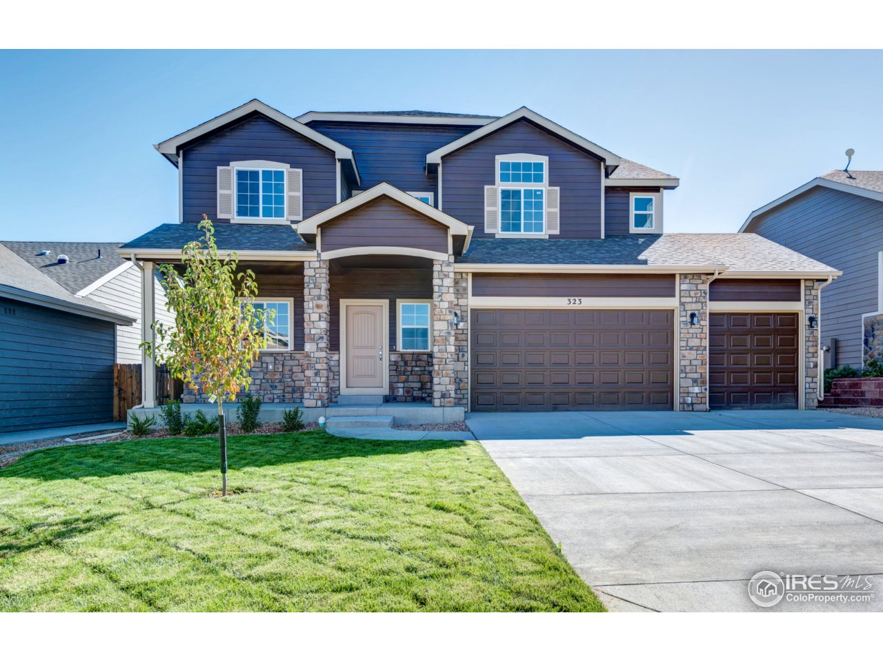 4379 Chicory Ct, Johnstown, CO 80534