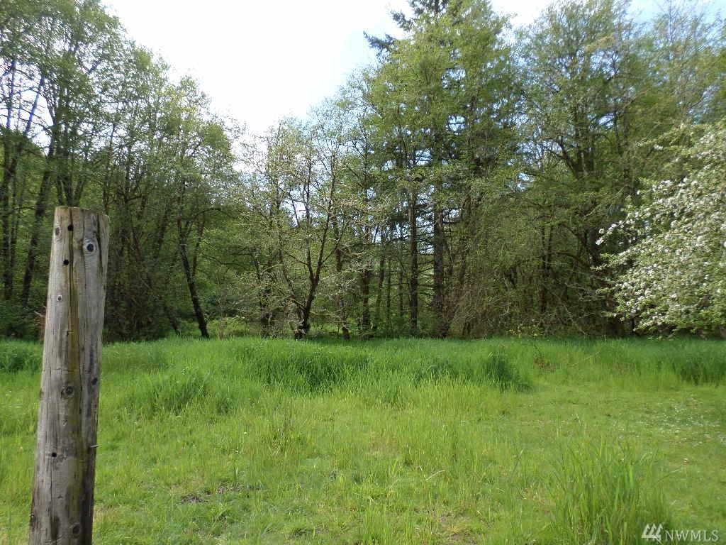 355 Lost Valley Rd A, Boistfort, WA 98538