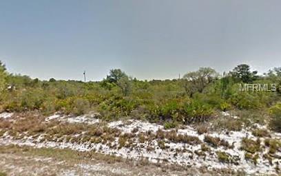 1778 HARTMAN ROAD, AVON PARK, FL 33825