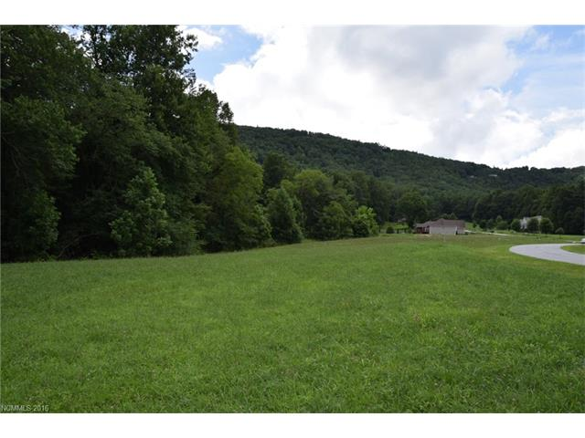 Pasture land with stunning mountain views! Less than a fifteen minute drive from all that downtown Hendersonville has to offer: festivals, shops, dining, etc. No need to worry about steep drives or gravel roads in this desirable Hendersonville neighborhood! Large lots provide privacy to each neighbor while the community as a whole is well maintained with meticulous landscaping. Don't miss out on your chance to build your dream home!