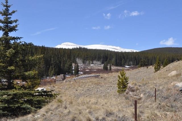 1520 PENNSYLVANIA CREEK ROAD, FAIRPLAY, CO 80440